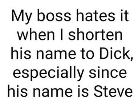 Dick-Steve