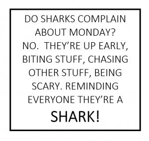 sharks-500